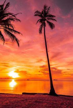 Summer Beach Sunset Photo Studio Backdrop J03736 - 10'W*20'H(3*6m)