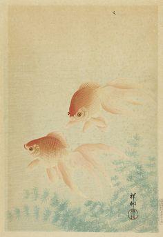 Pair of Butterfly Fish Ohara Shōson (Koson) (Japan, 1877-1945) Japan, 1926 Prints; woodcuts Color woodblock print