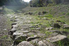 Parco degli Etruschi - Area archeologica di Roselle (Grosseto)