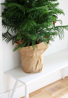 Leuke wasbare Paper bag om je kerstboom in te zetten. Ook in het zwart en wit. www.coos-je.nl