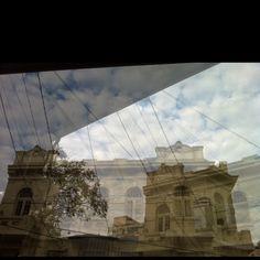 imagem de / image by Sara Teixeira Munaretto
