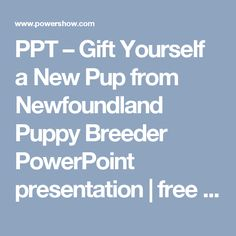 PPT – Gift Yourself a New Pup from Newfoundland Puppy Breeder PowerPoint presentation | free to download  - id: 855ea4-MGFkM