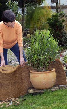 Tipps Zum Überwintern Von Kübelpflanzen Bodenverbesserung Garten Mittel Tipps