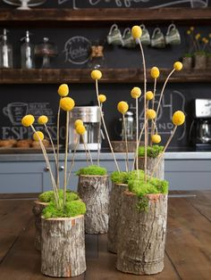 moss & craspedia in a log vase as seen on HGTV's Fixer Upper Magnolia Farms, Magnolia Homes, Vase Crafts, Chip And Joanna Gaines, Deco Floral, Vases Decor, Vase Decorations, Wall Vases, Spring Decorations