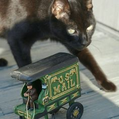 So many great cast iron toys and mechanical banks I'm trying to put up in my Etsy shop. But this time I was PHOTO BOMBED by my beautiful cat Black Jack. :) Check out my antique mechanical banks and horse drawn wagon toys! More to come soon!!!!