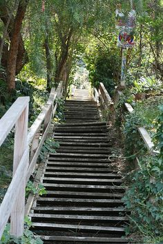 Secret Stairs LA: All around the hillsides of Los Angeles, there are secret staircases that take pedestrians from one area to another. Visit secretstairs-la.com/walks.html to check out the hiking routes.     Photo credit: cambreenotes.com