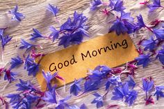 Good Morning in progress in looking memo on white wood with beautiful blue flowers around Good Morning Messages, Good Morning Greetings, Good Morning Wishes, Good Morning Images, Baby First Birthday, Happy Birthday, Buenos Dias Quotes, Good Morning Wallpaper, Have A Beautiful Day