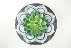 Mandala cemento jardinera Ronda plantador centro por AnsonDesign