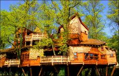 Alnwick Gardens TreeHouse Co., Scotland. Very large- 6,000 square foot tree house holds a 120-seat restaurant, a retail shop, classrooms, and two private dining rooms.