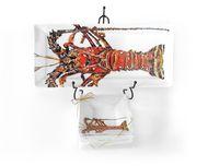 Kitchen Lobster Party Pleaser Set