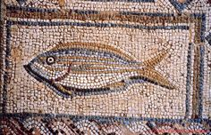 Cyprus Kourion Archaeological Site Mosaic