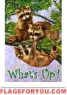 What's Up? raccoon Garden Flag House Flags, Garden Flags, Squirrel, Christmas Ornaments, Holiday Decor, Animals, Xmas Ornaments, Animales, Animaux