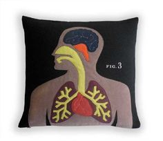 Anatomy Pillow by Heather Lins Home $220.00