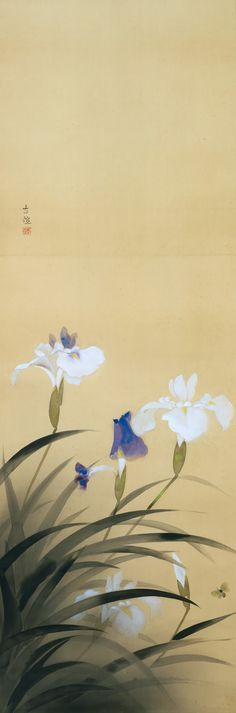 Japanese Prints Iris Laevigata / & ca Kobayashi Kokei / & Japanese - Japanese Ink Painting, Japan Painting, Art Japonais, Japanese Flowers, Japanese Prints, Japan Art, Botanical Art, Chinese Art, Art Museum