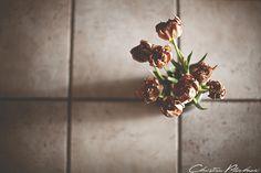 27 by christian.plochacki, via Flickr