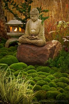 "Buddha-use ""Little Fat Guy"" (find rock for him to sit on) and moss, fern and liriope in corner by Japanese maple?"