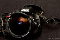 Fish Eye Lens Shots   ... The-Phoblographer-rokinon-8mm-lens-for-nikon-product-photos-2-of-3.jpg