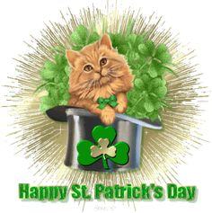 animated gif st patricks day e cards San Patrick Day, St Patricks Day Pictures, Happy St Patricks Day, Irish Greetings, Happy Gif, Gifs, Cat Hat, E Cards, Scrapbooking
