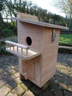 5596d23f294d8bad9bc6cd4527a52fd4 squirrel house birdhouse pinterest house and squirrel,Red Squirrel House Plans