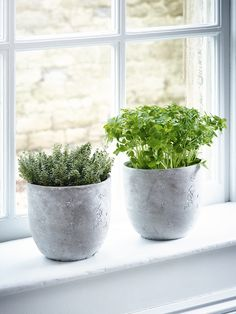Cast from poured concrete, our set of two round planters have a natural textured finish and slightly rounded base. The perfect pots for succulents and hardy house plants, our pair of small contemporary planters add industrial style to your home.