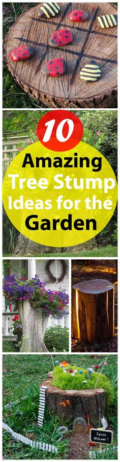 10 Great Things to Do with Tree Stumps in the Garden 10 Amazing Tree Stump Ideas for the Garden Garden Web, Garden Trees, Balcony Garden, Garden Kids, Fairies Garden, Tree Stump Planter, Tree Stumps, Outdoor Projects, Outdoor Decor