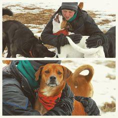 HUGS. #evasplaypupsPA #dogs #dogcamp #doggyvacays #doggievacays #dogboarding #cuddlebugs #cuddletime #playtime #dogsinnature #runfree #badassbk #adoptdontshop #rescuedog #endlessmountains #mountpleasant #PA #pennsylvania