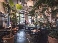Bank restaurant Zürich Tipp Cafe Restaurant, Zurich, Garden Cafe, Cool Cafe, Eurotrip, Travel Goals, Germany Travel, Wonderful Places, Switzerland