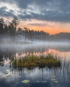 Great Photos, Cool Pictures, Archipelago, Amazing Nature, Landscape Art, Mists, Nostalgia, Punk, Fantasy