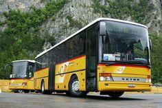 Post Bus, Automobile, Sunflower Art, Busse, Transportation, Trucks, Public Transport, Swiss Guard, Car