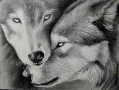 Resultado de imagem para draw wolves