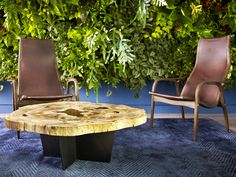 Green Wall or Vertical Garden incorporating life into Office Design in San Francisco, CA.  Leather Chairs, Navy Silk Rug and Petrified Wood Coffee Table complete the space.