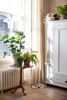 Simple natural home decor, home decor ideas in natural neutral colours, linen and plants home decor, natural home decor with green plants linen and bare wood Source by gerdurg decor plants