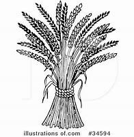 Image Result For Free Clip Art Black And White Wheat Designs To Draw Tattoo Drawings Drawings