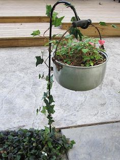 nice use of common plant hanger, especially with the vine jazzing it up. Using old cooking pot is fun. This might even survive a big wind.