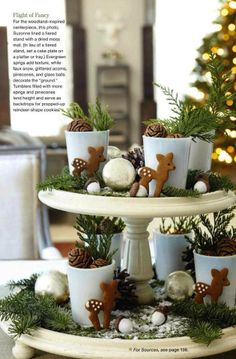 .Miniature woodland on cake stands!