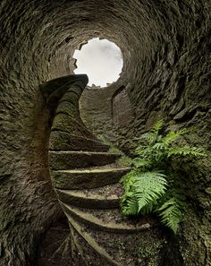 The cave with stairs... Long since abandoned and so fun to look at (sorry, I don't know where this is).