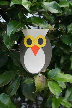 math or science- shapes or owl/nocturnal animals