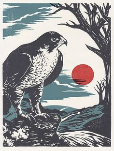 'The Peregrine' print