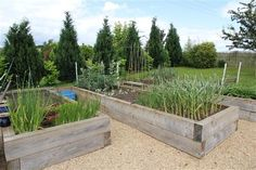 Great raised beds out of railway sleepers