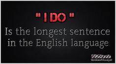 Thursday LOL pictures - Your rib tickling rendez vous - PMSLweb Sarcastic Pictures, Funny Pictures, Sarcastic Humor, Sarcasm, Bad Puns, English Language, Sentences, Haha, Thursday