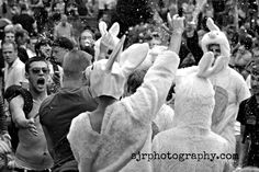 SJR Photography- Art, Landscape and Reportage Photography: Crowds, Carrots and Dancing Bunnies