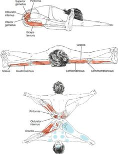 Wide legged forward fold. Get them hips open.