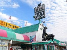 Three Bears General Store - This is a two story store with many exciting things to buy and do including feeding the live bears. #bears #store