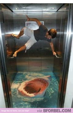 I'd Ninja Wall Climb Too If That Was In The Elevator…