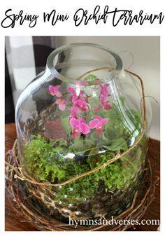 DIY Terrarium for Spring with Live Plants - Hymns and Verses Terrarium Diy, Orchid Terrarium, Fresco, Mini Orquideas, Picture Frame Wreath, Mini Plants, Miniature Plants, Terraria, Pink Tulips