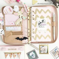 loveallprettythings | I am in love with the nude and pink interior of the Kate…