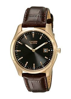 Citizen Mens AU104300E EcoDrive Stainless Steel Watch with Brown Leather Band >>> See this great product.