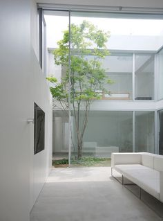 Cube Court House by Shinichi Ogawa & Associates. Would love to have a court yard with a tree in my house.