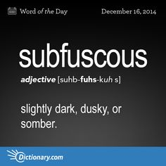 The current administration has subfuscous undertones. - As the rain came down and the grey clouds settled in, my mood became as subfuscous as the elements. Unusual Words, Weird Words, Rare Words, Big Words, Words To Use, Unique Words, Great Words, Powerful Words, Vocabulary Words