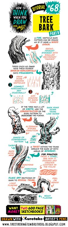 The Etherington Brothers: How to THINK when you draw TREE BARK tutorial (landscaping drawing) Drawing Lessons, Drawing Techniques, Drawing Tips, Drawing Reference, Sketching Tips, Doodle Drawing, Comic Tutorial, Poses References, Tree Illustration